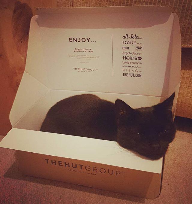 Pussbag loves a cardboard box  #rescuecat #blackcat #catsofinstagram #tuxedocat #gatonegro #catstagram #thehutgroup