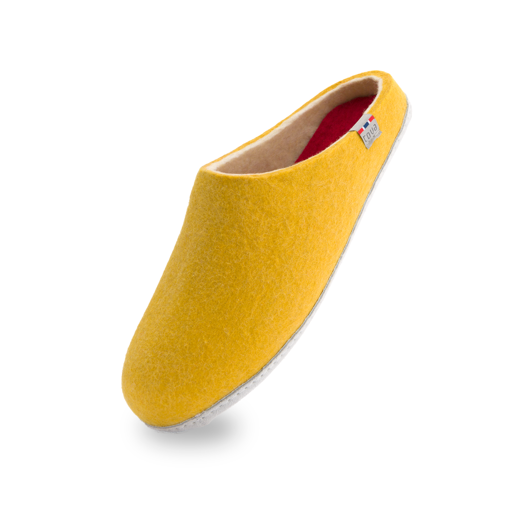 Slipper_Yellow_2016_Front.png