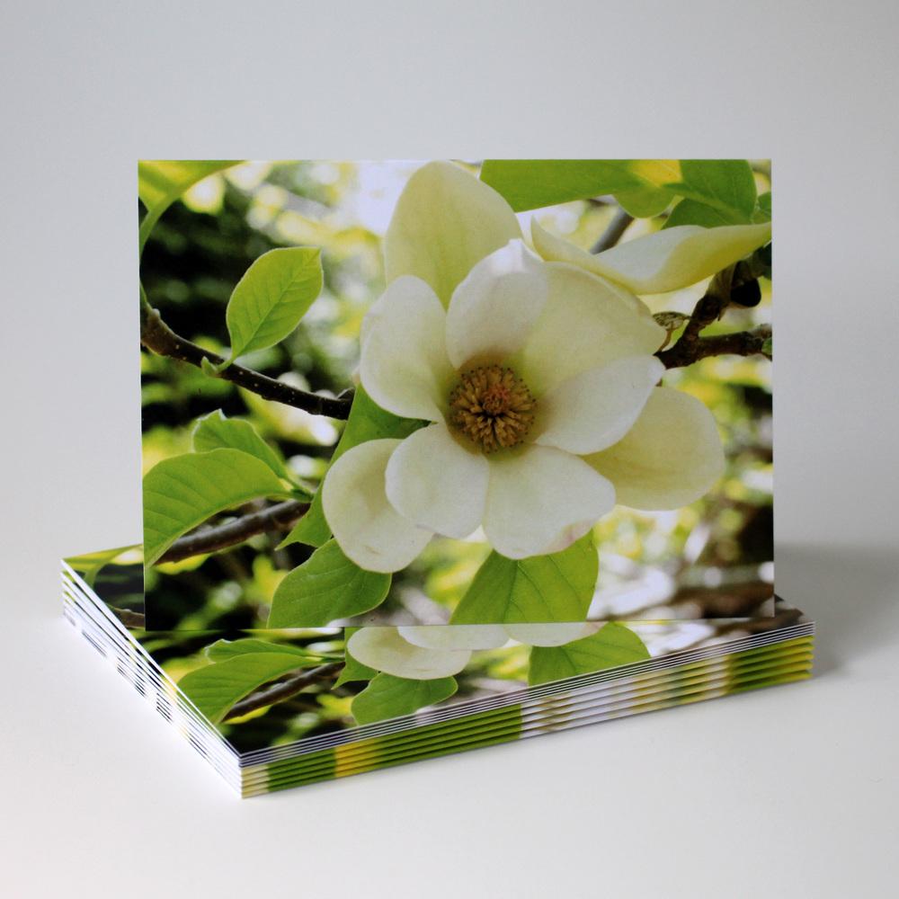 Cafe Notes + Company Magnolia Blank Card