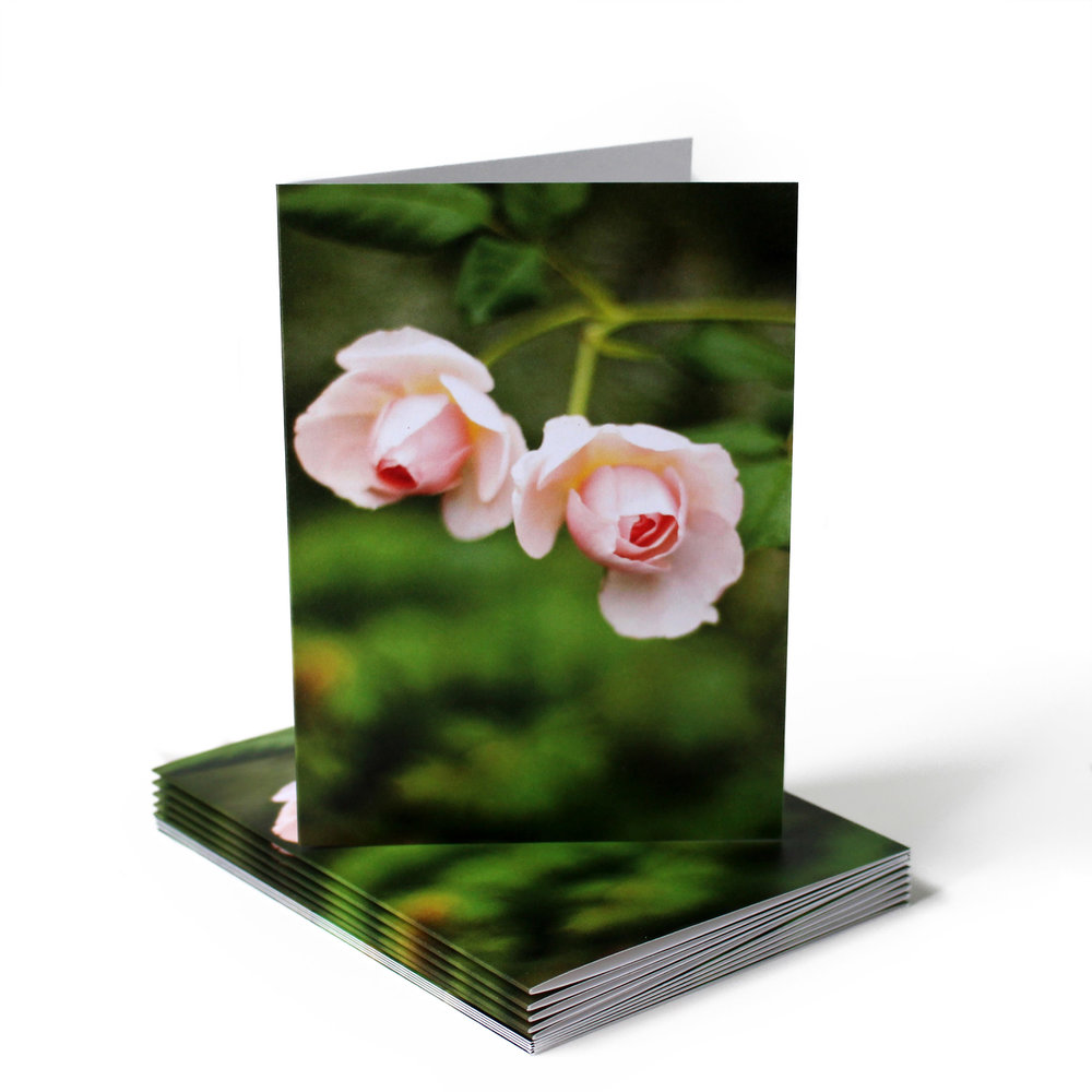 Cafe Notes + Company Rosebuds Blank Card