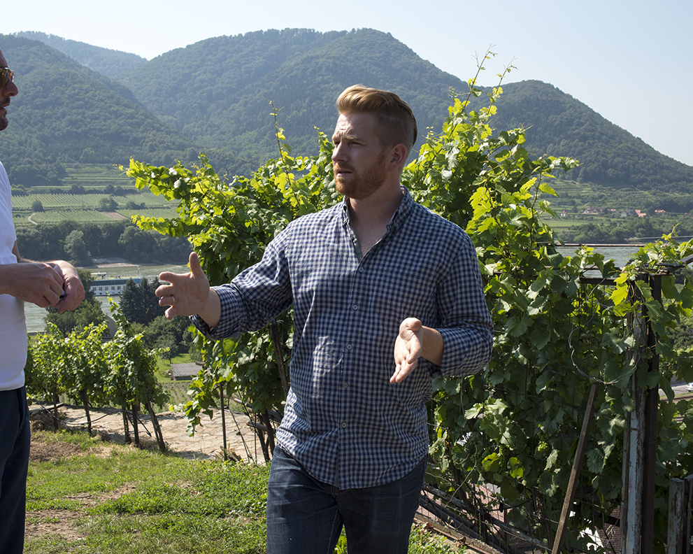 Franz in vines.jpg