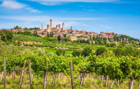 Sorelli-San Gimignano.jpg