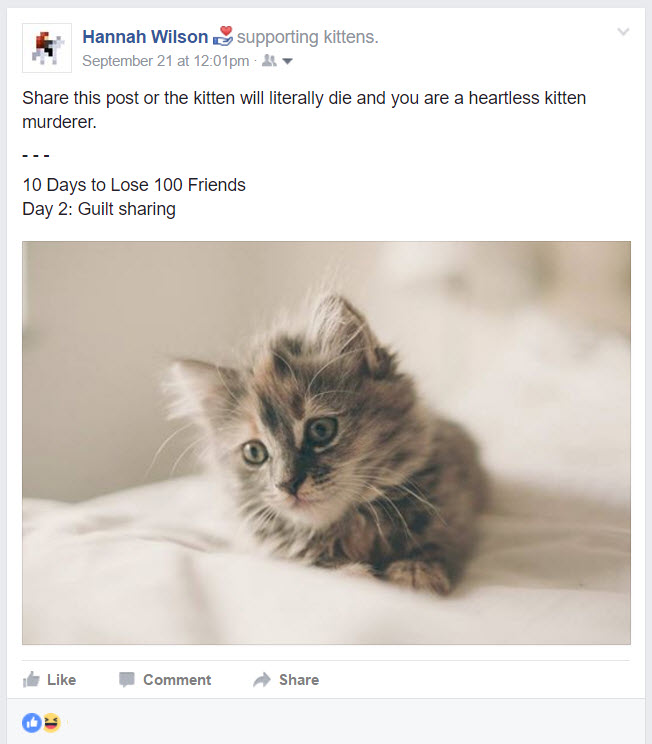 Guilt Sharing  || 10 Days to Lose 100 Friends: A Sarcastic Facebook Post Series