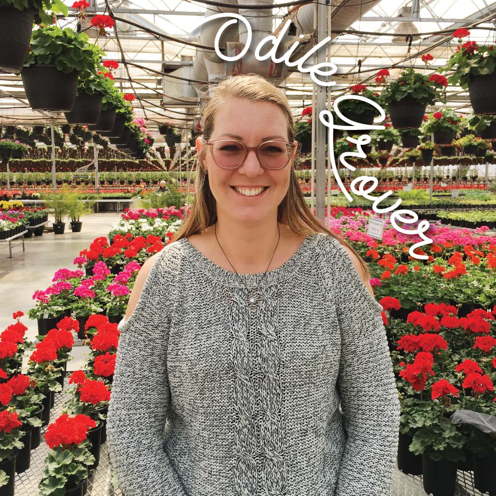Odile Grover - Fille ainée de la famille, elle est tombée amoureuse de l'employé le plus travaillant et dévoué que l'entreprise ait connu. 19 années et 3 enfants plus tard, ils sont toujours aussi investis dans la vie sur la ferme.