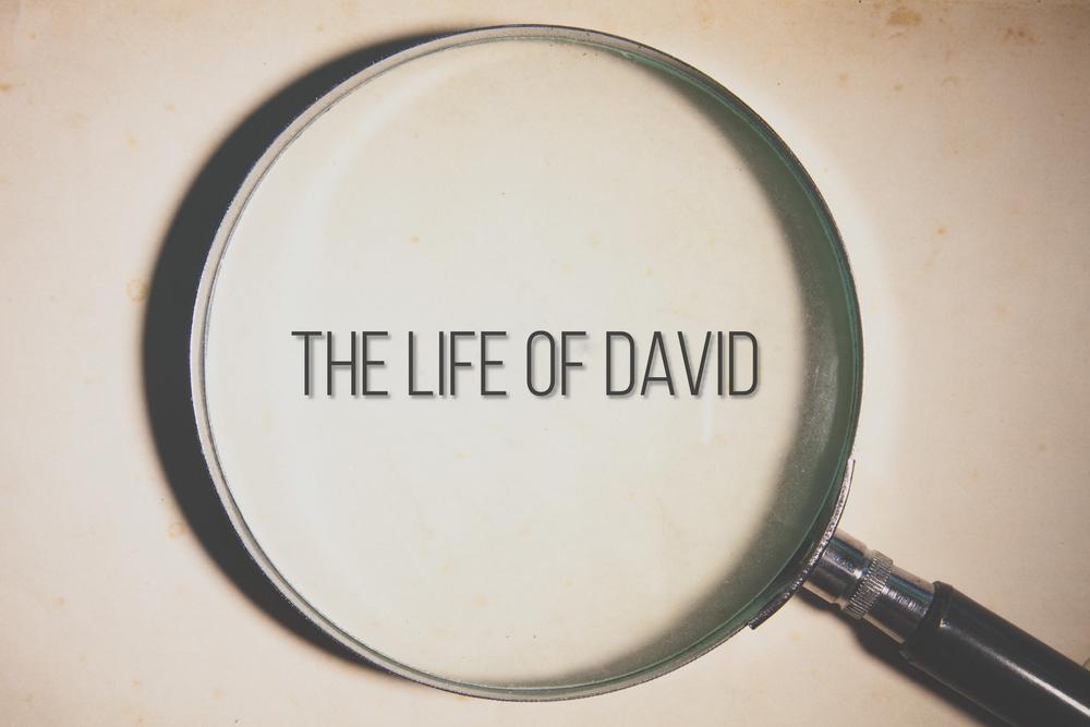 David Study.png