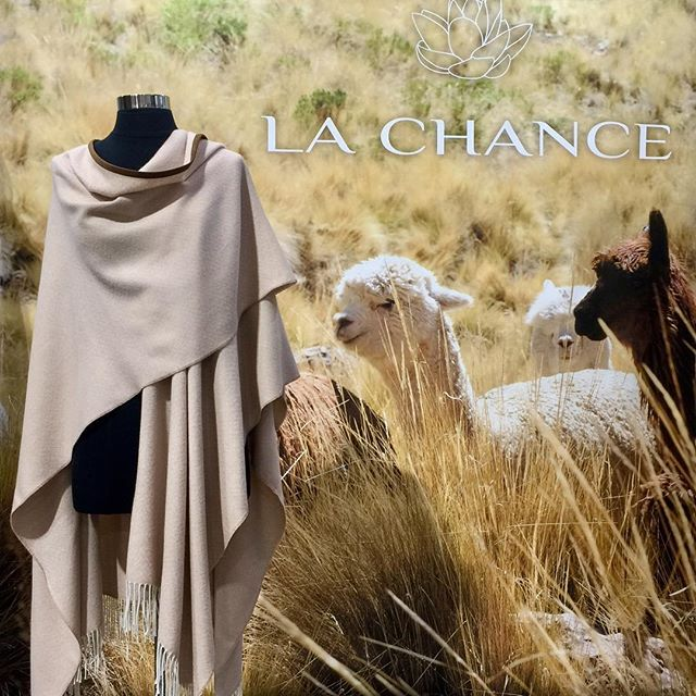 NY NOW having a great show. Come see us booth 2363 #nynow #bloggerlife #alpacaluxury #luxury #lifestyle #style #design #decor