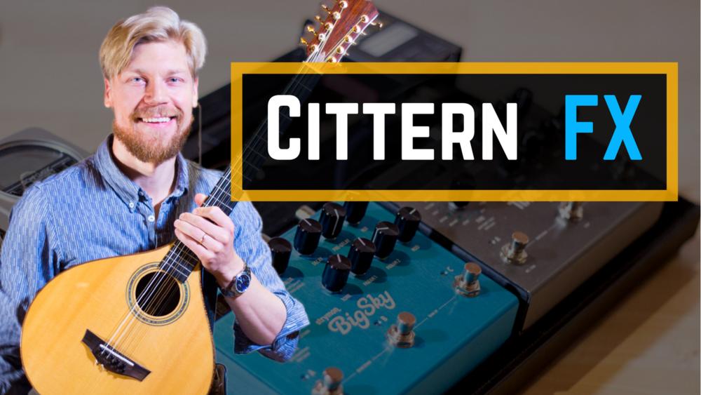 Cittern - Strymon Timeline Delay & Big Sky Reverb