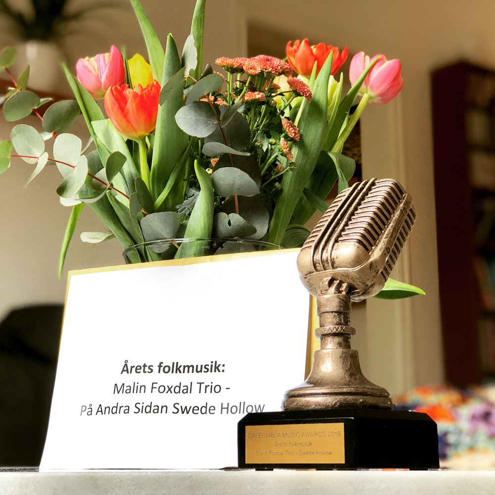 dalecarlia music awards_magnus zetterlund