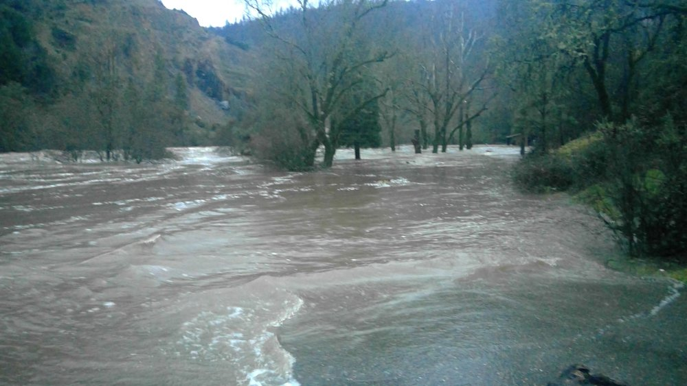The South Fork of the American River breaks its banks. Placerville California, January 2017.