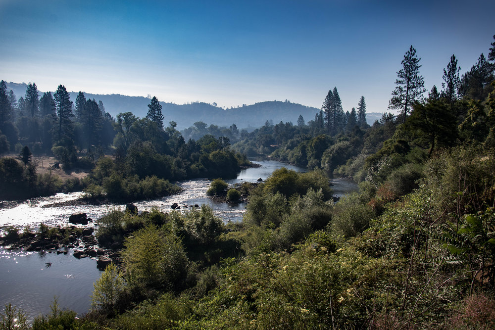 American River Scenery