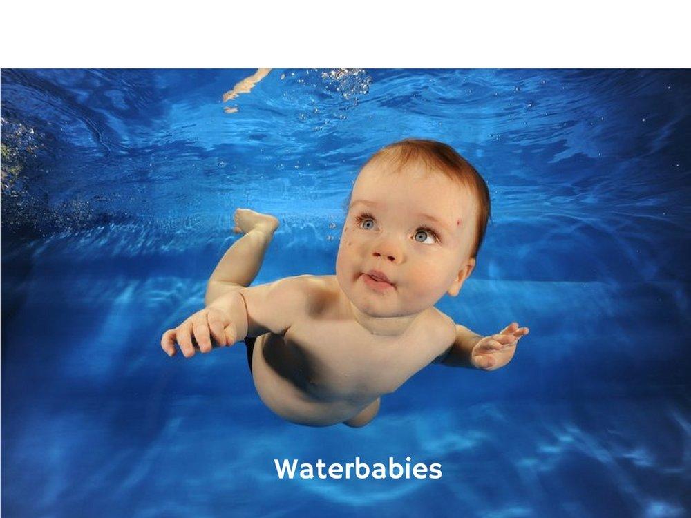 Waterbabies.jpg