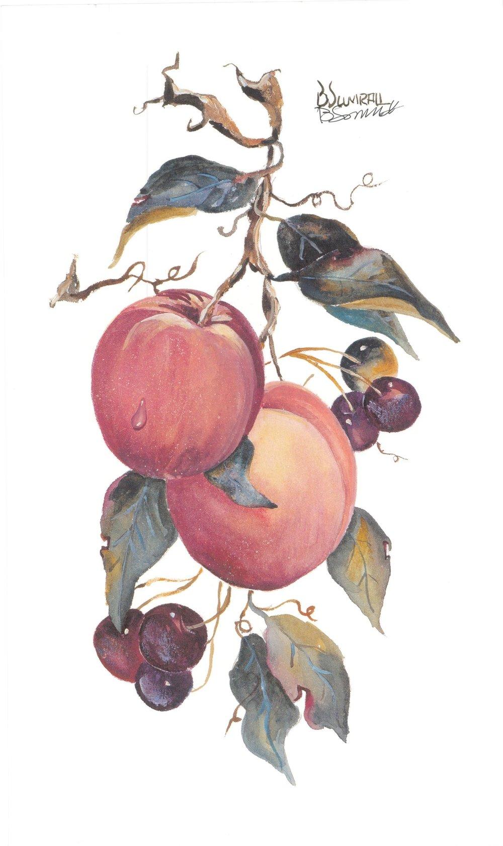 Peaches (S) By Sumrall 20.5cm (w) x 34 (h)  Image 20.5cm (w) x 34 (h)  Paper.jpg