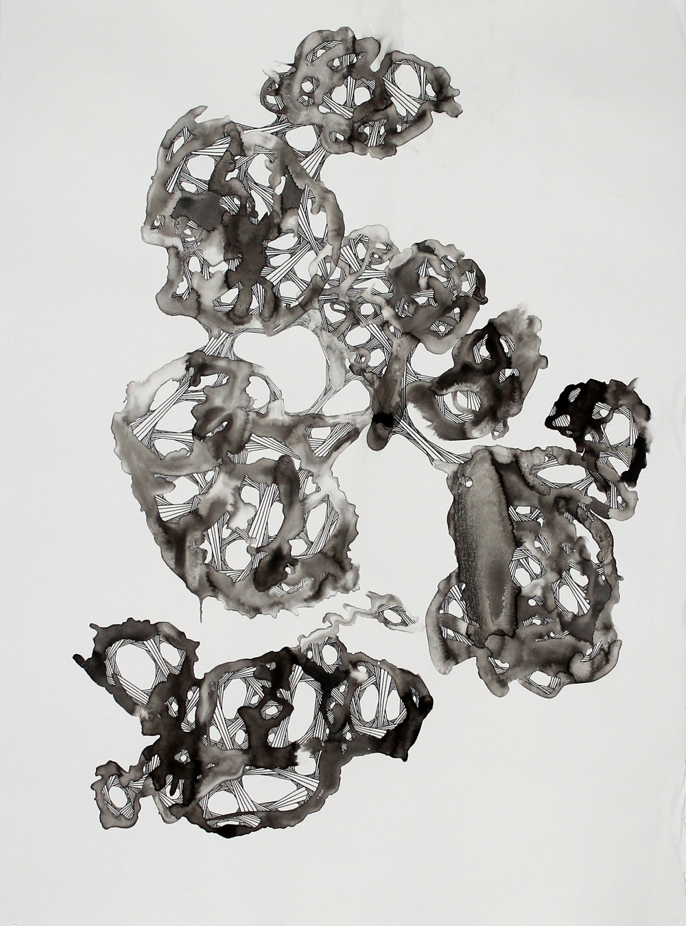 "Nodes in Vertical Motion with Absinthe Stain, Ink on paper, 30"" x 23"""