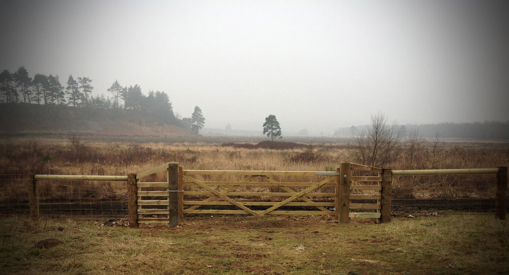 Dodd-&-Co-Agricultural-and-equine-fencing-and-construction2.jpg