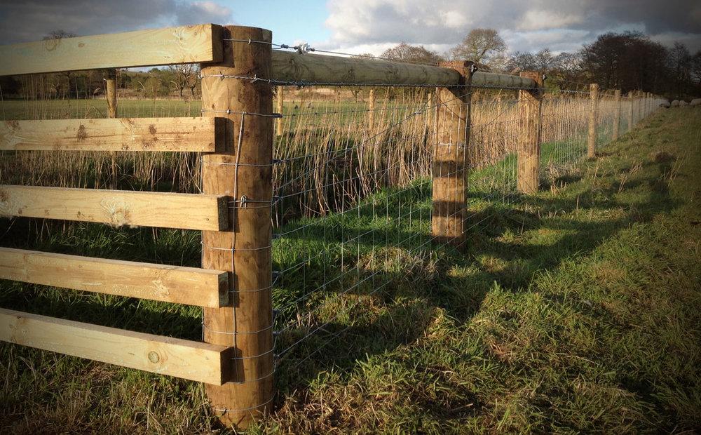 lifestock-fencing2.jpg