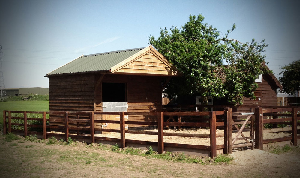 equine-facilities2.jpg