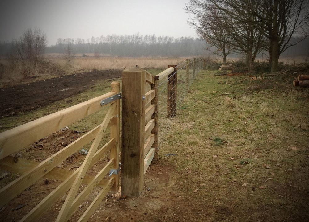 fencing2.jpg