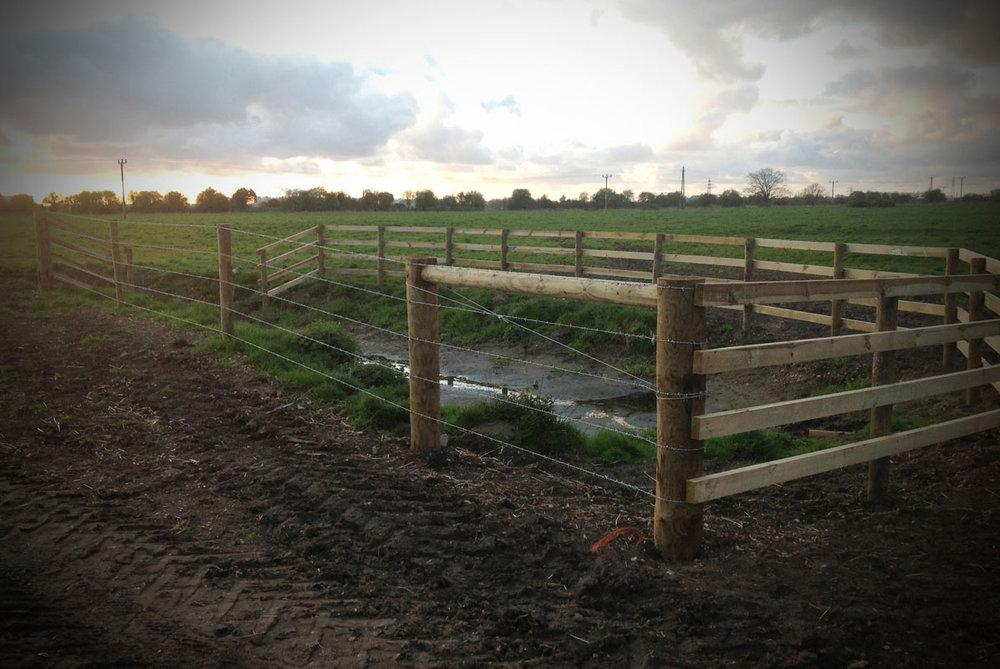 fencing4.jpg