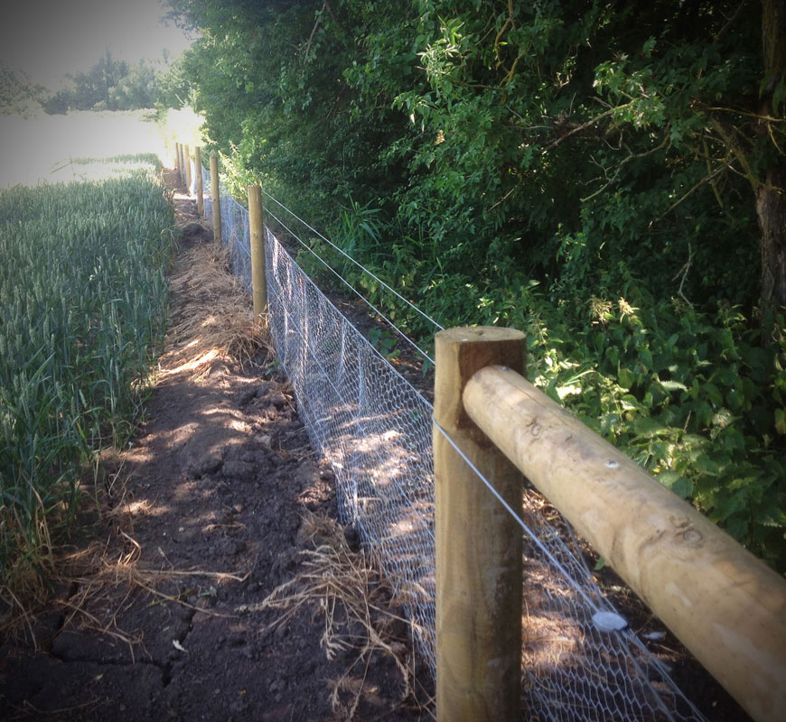 fencing10.jpg