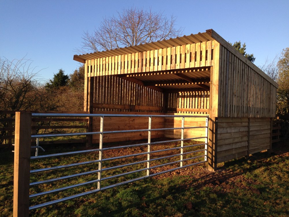 A cattle shed in East Winch