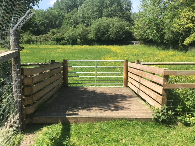 Goat bridge at Pact Animal Sanctuary