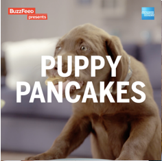 puppy copy.png