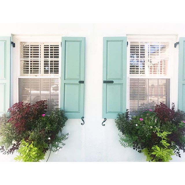 Happy #windowboxwednesday from Charleston, South Carolina 🌿✨ . . .  #abitofcharleston #charleston #explorecharleston #chsscenes #chstoday #chs #southofbroad #downtowncharleston #historiccharleston #windowbox #windowboxesofcharleston #windowboxinspo #vsco #eastbaystreet