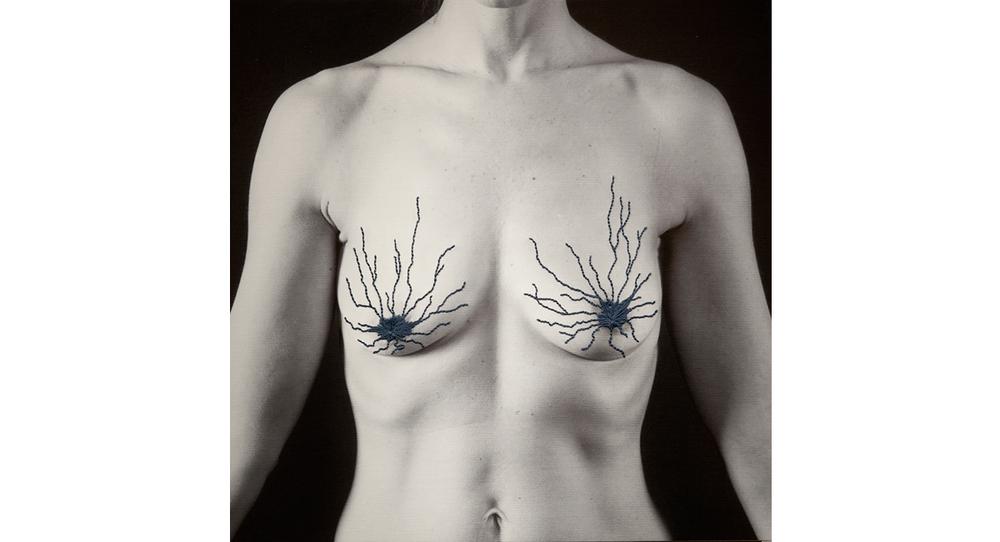 nipples p.jpg