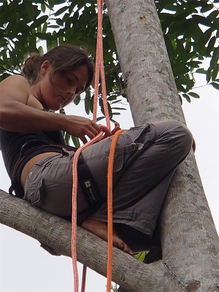 Michelle Tree.jpg