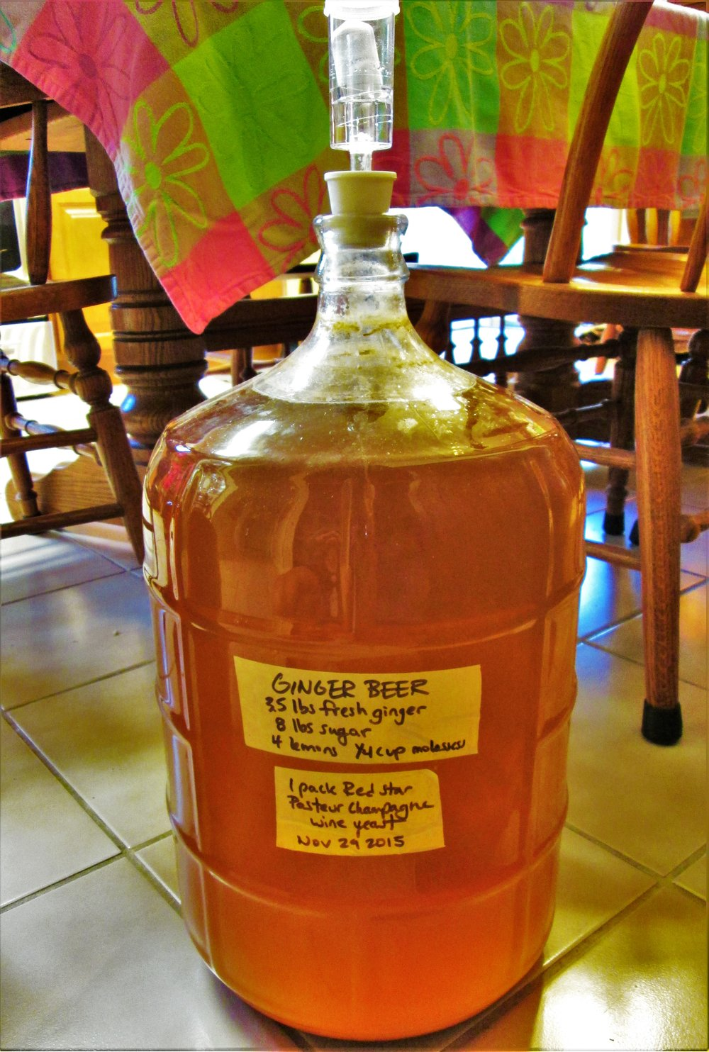 ginger beer fermentation