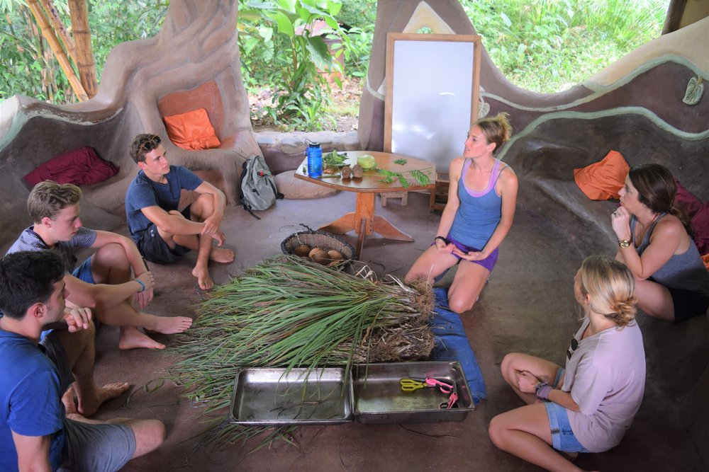 Students learn about herbal medicine by making it. (Photo Credit Scott Gallant; Mastatal, Costa Rica; of Laura Killingbeck and students)