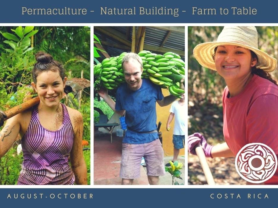 Sustainability Primer 1.jpg