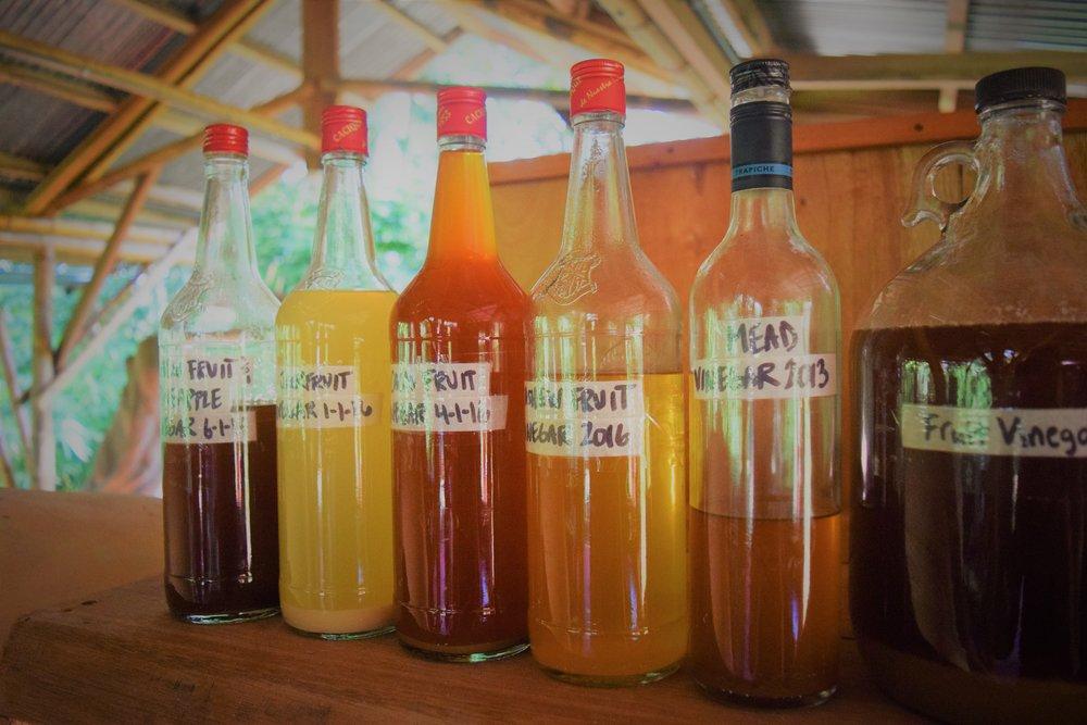 Vinegars.JPG
