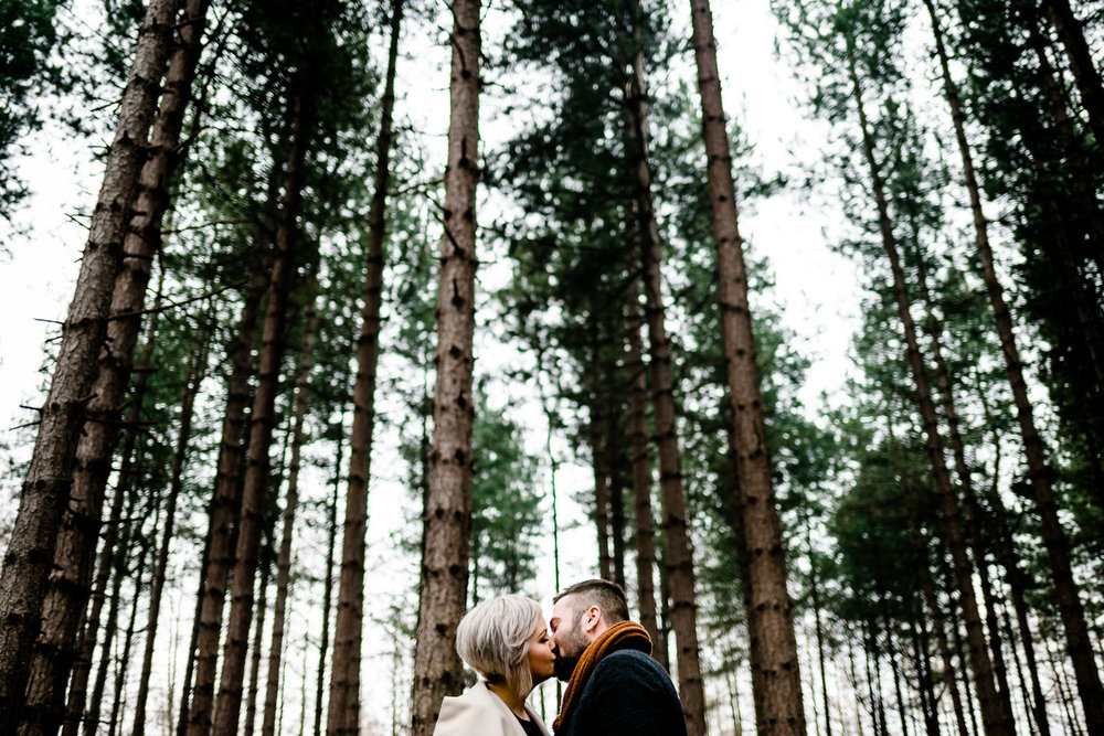 Engaged couple kiss under tall pine trees in Yorkshire