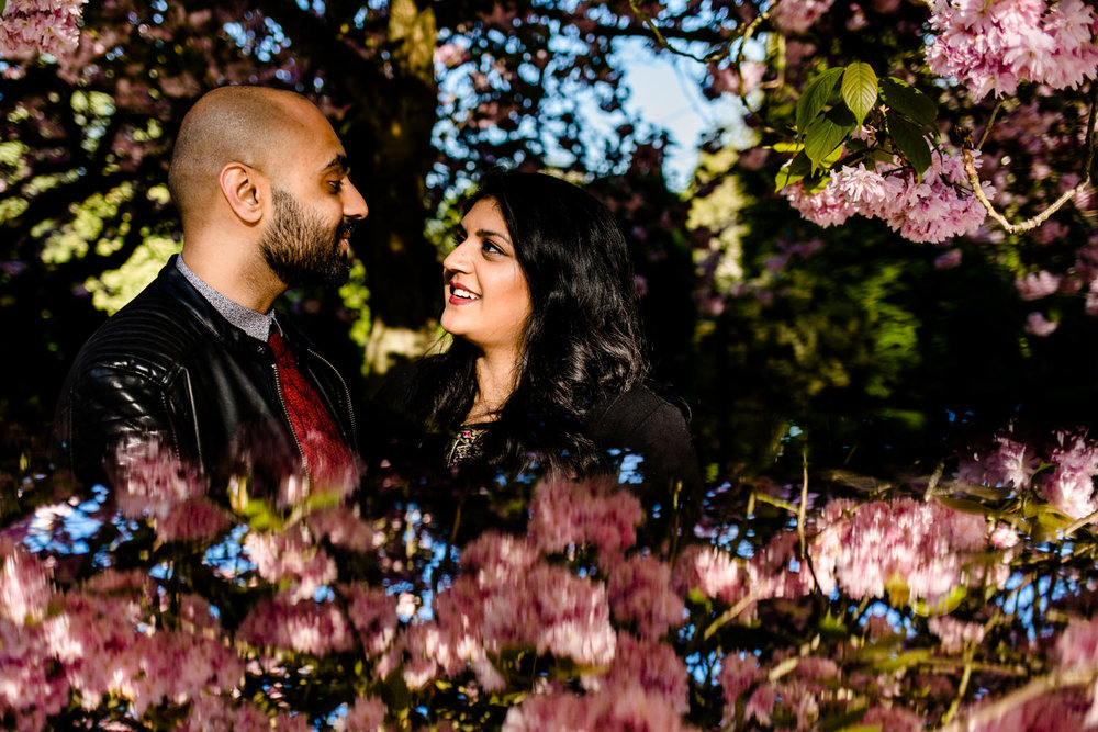 Hindu couple in front of pink blossom with a reflection on a pre wedding shoot in Manchester.