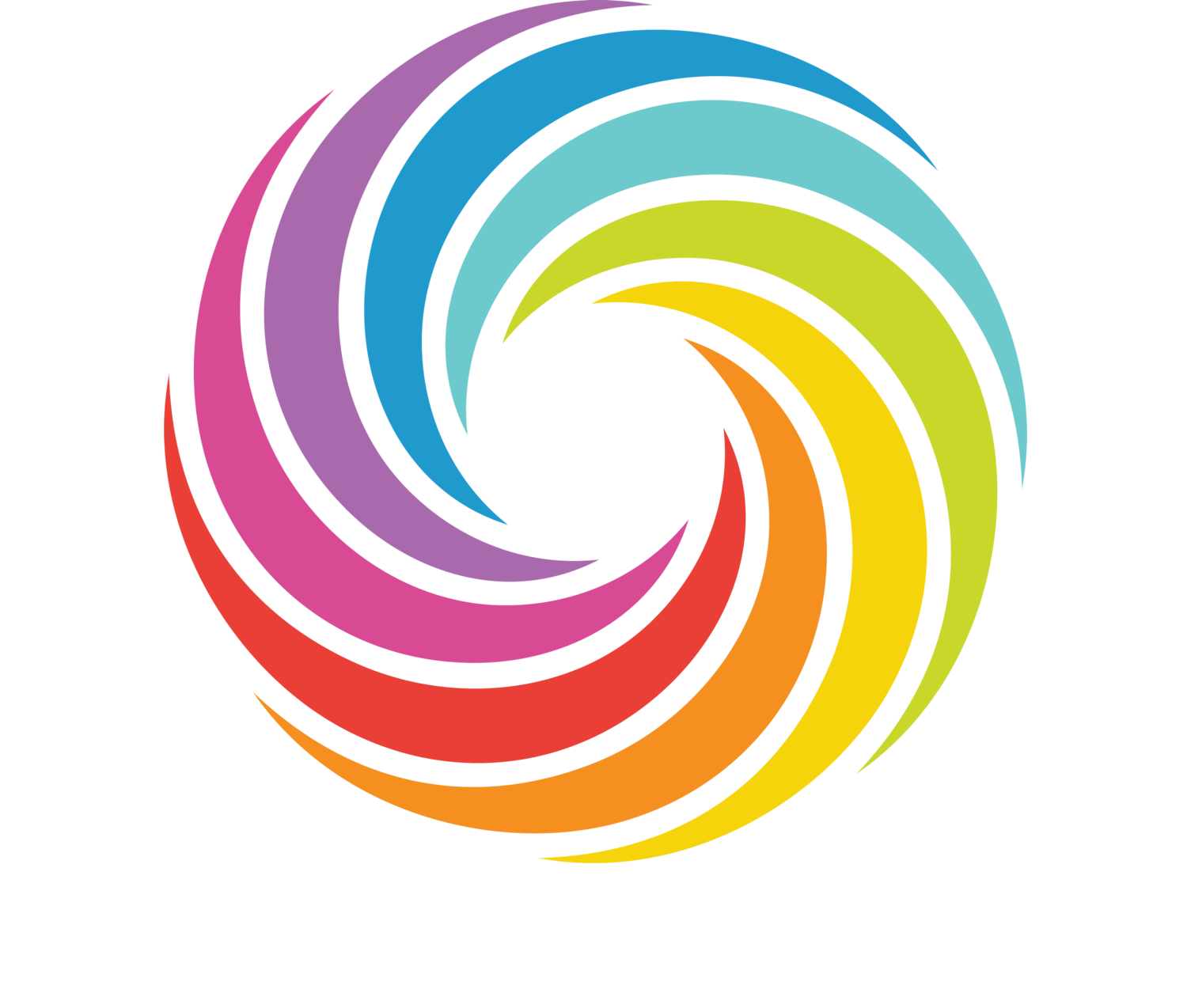 Original Rainbow Bagels & Bagel Art @ The Bagel Store, Brooklyn