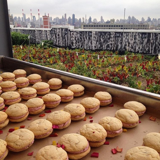 Mmmm.... @whiskmeawaycakes is providing delicious desserts for our 10/24 benefit concert at @brooklyngrange ! 🔥🍰🍭
