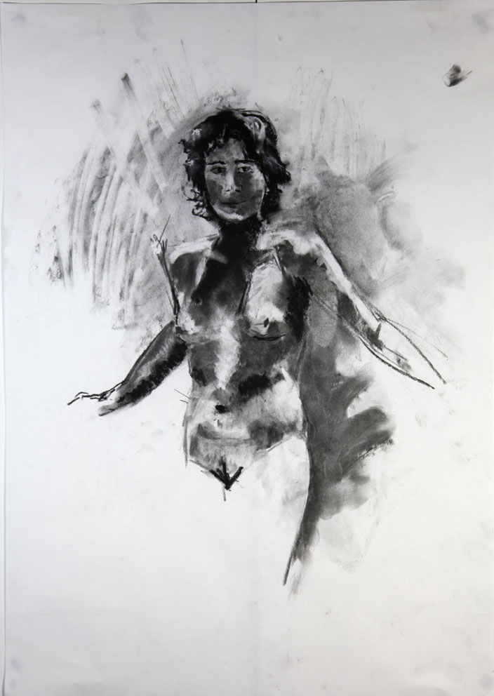 Shadow Nude #4  2012 | 42 x 59.2 cm Charcoal / compressed charcoal Signed on front  Buy this artwork