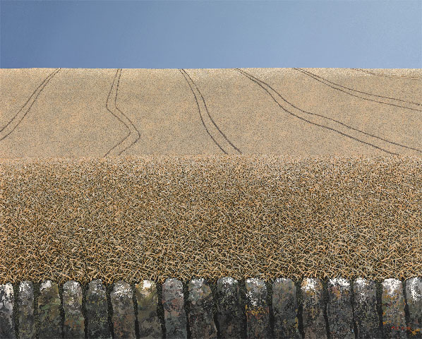 Tracks In The Corn, Michael Kidd (RONA Group) Langham Gallery   www.langhamgallery.com