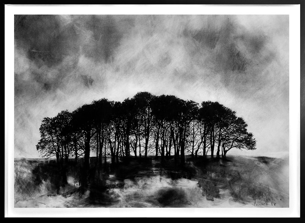 Chicklade Copse  2018 | 84 x 60cm Conte and charcoal Signed  SOLD