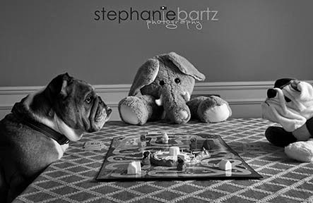 winston at play bw pm.jpg