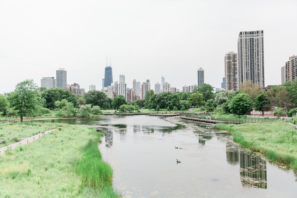 Chicago Photography Bonphotage