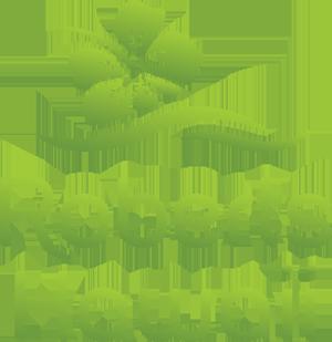 RobertsHawaii_Logo.png