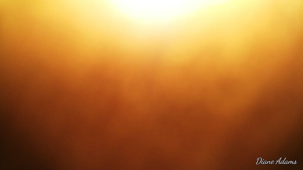 Sun - Diane Adams 20180103_103033.jpg