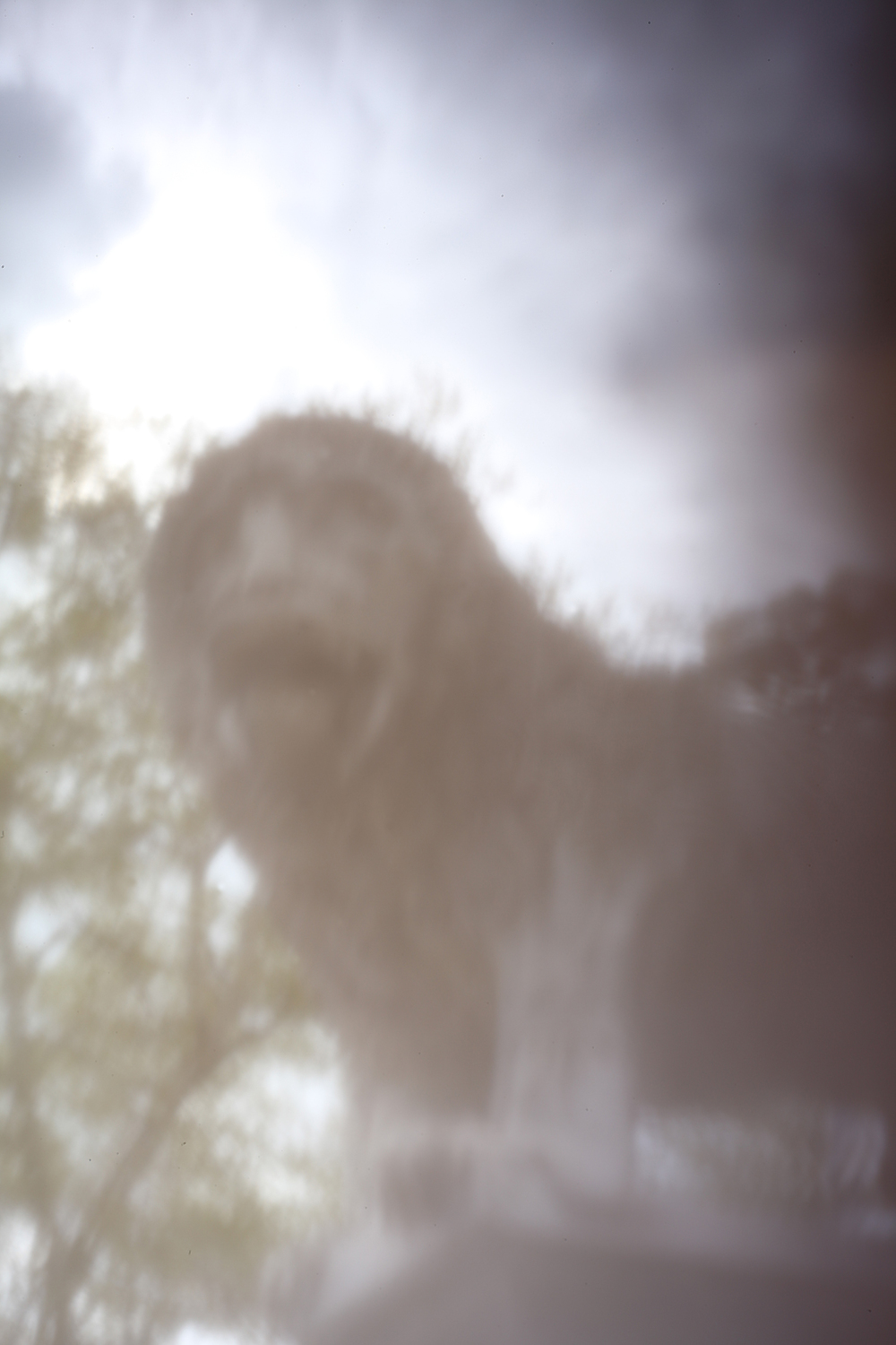 'The Dream', 2011/15, Pinhole photograph, laser-print on 180gsm cartridge paper, 12 x 18 cm