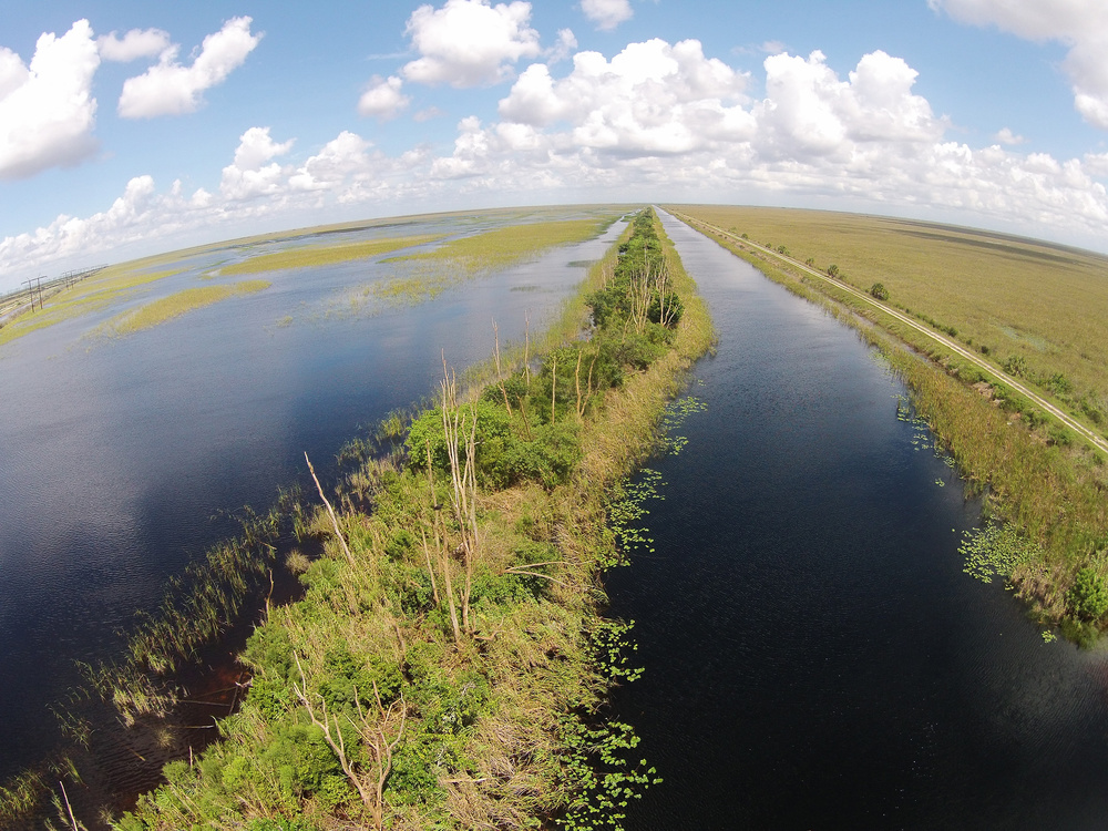 the increase of everglades and the threat of mercury on the state of florida The florida department of health works to protect, promote & improve the health of all people in florida through integrated state mercury spills.