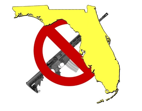 Gun_Control_Florida