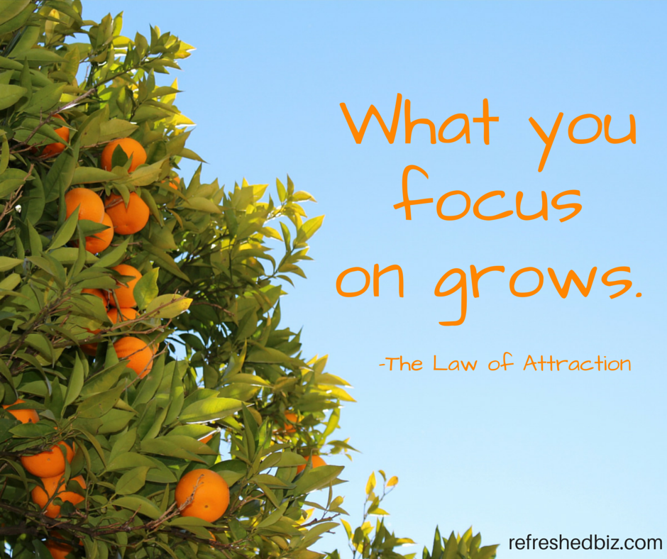 What you focuson expands.-2