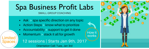 Spa Business Profit Labs