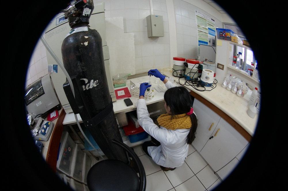 BIOREN LAB 2 testing microalgas.JPG